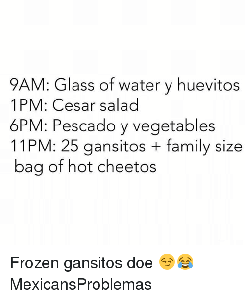 Cheetos, Doe, and Family: 9AM: Glass of water y huevitos  1 PM: Cesar salad  6PM: Pescado y vegetables  11 PM: 25 gansitos family size  bag of hot cheetos Frozen gansitos doe 😏😂 MexicansProblemas