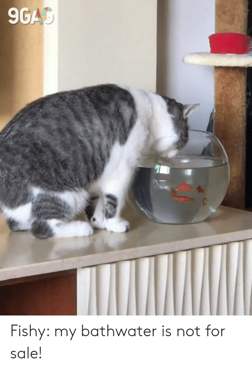 fishy: 9GAC Fishy: my bathwater is not for sale!