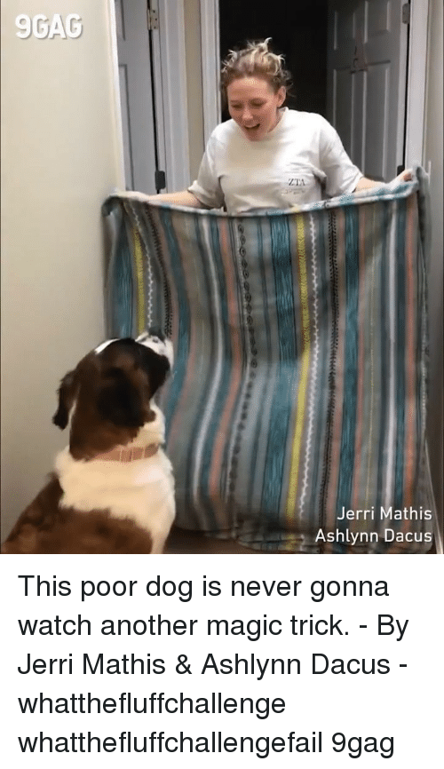 Jerri: 9GAC  Jerri Mathis  Ashlynn Dacus This poor dog is never gonna watch another magic trick. - By Jerri Mathis & Ashlynn Dacus - whatthefluffchallenge whatthefluffchallengefail 9gag