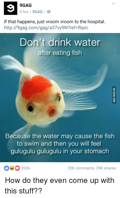 9gag 9 hrs 9gag if that happens just vroom vroom to the for Do fish drink water