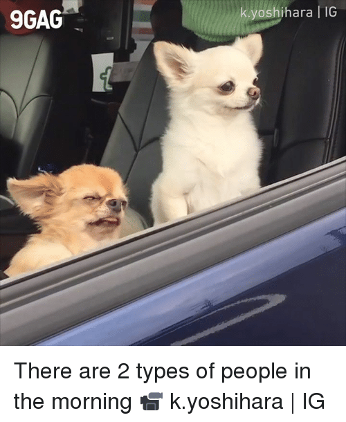 2 Types Of People: 9GAG  yoshihara IG There are 2 types of people in the morning  📹 k.yoshihara | IG