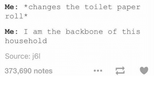 Changing The Toilet Paper Roll: Me *changes the toilet paper  roll  Me I am the backbone of this  household  Source: j6l  373,690 notes
