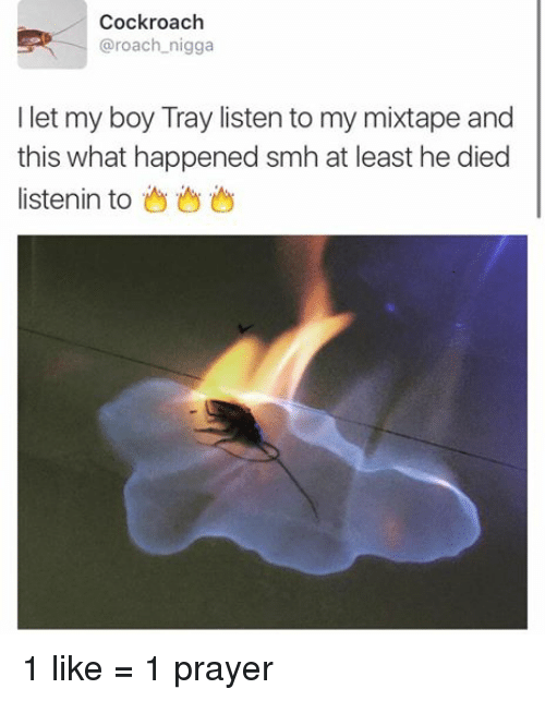 Blackpeopletwitter, Mixtapes, and My Mixtapes: Cockroach  @roach nigga  I let my boy Tray listen to my mixtape and  this what happened smh at least he died  listenin to 1 like = 1 prayer