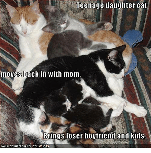 Cats, Moms, and Grumpy Cat: Teenage daughter cat  moves back in with mom  Brings loser boyfriend and kids