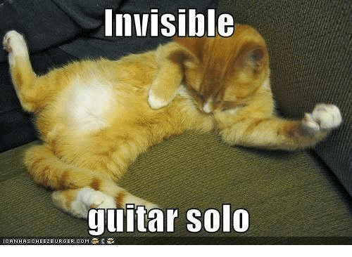 Funny Cat Invisible Meme
