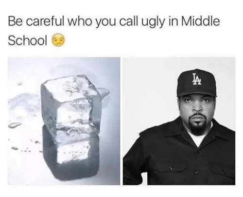 Ugly, Be Careful Who You Call Ugly, and Dank Memes: Be careful who you call ugly in Middle  Schoo