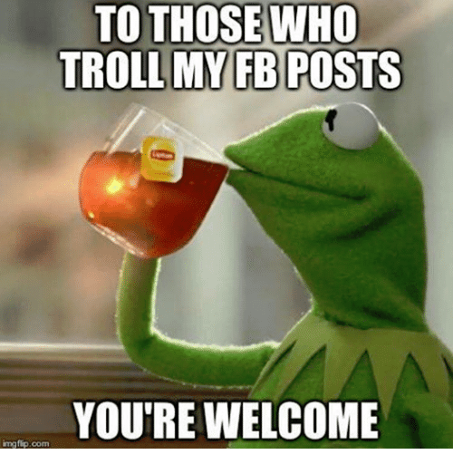 Troll, Trolling, and Dank Memes: TO THOSE WHO  TROLL MY FB POSTS  YOU'RE WELCOME  img Com