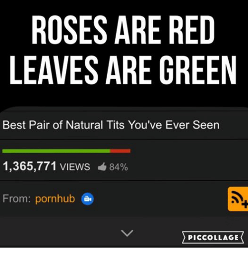 Pornhub, Tits, and Best: ROSES ARE RED  LEAVES ARE GREEN  Best Pair of Natural Tits You've Ever Seen  1,365,771 VIEWS 84%  From: pornhub  en  PIC COLLAGE
