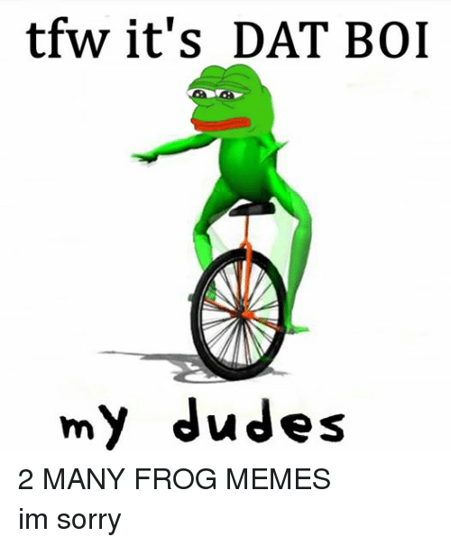 Dude, Meme, and Memes: tfw it's DAT BOI  my dudes 2 MANY FROG MEMES im sorry