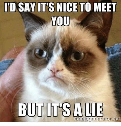 itd say its nice to meet you but its a lie et nneme