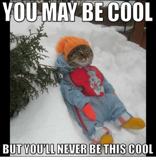 Dank Memes: YOU MAY BE COOL  BUT YOUILL NEVER BE THIS COOL
