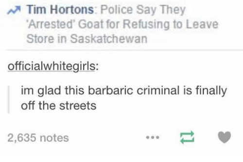 tim hortons: N Tim Hortons  Police Say They  Arrested Goat for Refusing to Leave  Store in Saskatchewan  officialwhitegirls:  im glad this barbaric criminal is finally  off the streets  2,635 notes