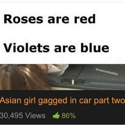 Asian, Cars, and Girls: Roses are red  Violets are blue  meme  es  Asian girl gagged in car part two  30,495 Views 86%