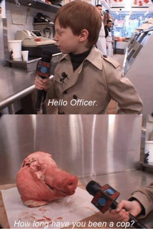 Hello, Office, and Dank Memes: Hello Officer.  How long have you been a cop?