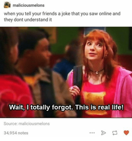 Jokes: maliciousmelon  when you tell your friends a joke that you saw online and  they dont understand it  Wait, I totally forgot. This is real life!  Source: maliciousmelons  34,954 notes