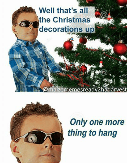 Funny Christmas Decorating Meme : Well that s all the christmas decorations up