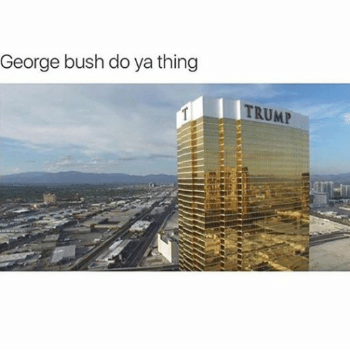 Trump, Dank Memes, and George Bush: George bush do ya thing  TRUMP