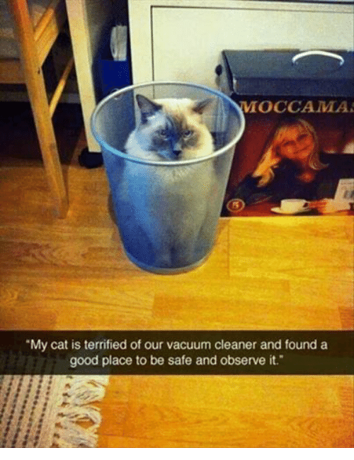 Vacuumed