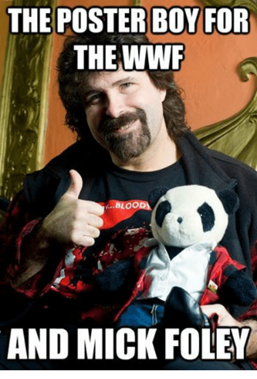 mick foley: THE POSTER BOY FOR  THE WWF  BLOO  AND MICK FOLEY