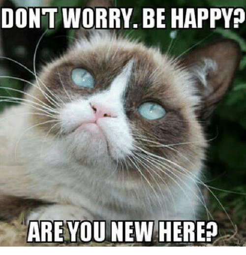 Don T Stress Funny Meme : Best memes about dont worry be happy