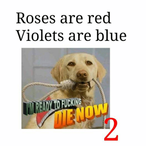 Blue, Reds, and Rose: Roses are red  Violets are blue  CKING