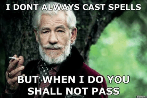 DnD: I DONT ALWAYS CAST SPELLS  BUT WHEN I DO YOU  SHALL NOT PASS