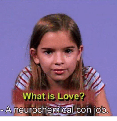 Love, Jobs, and What Is: What is Love  A neurochemical con job