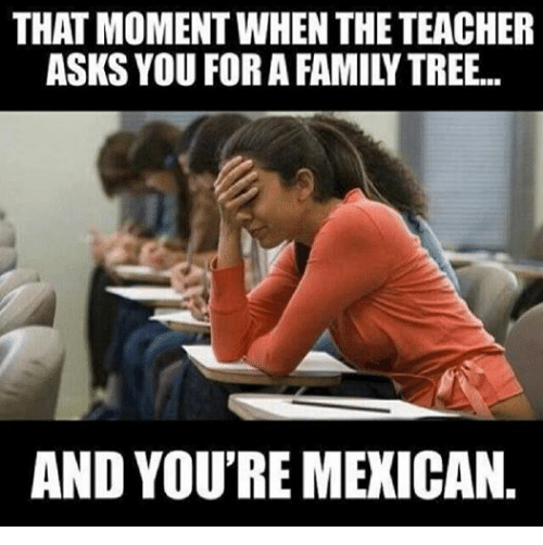 Family, Teacher, and Tree: THAT MOMENT WHEN THE TEACHER  ASKS YOU FORA FAMILY TREE...  AND YOU'RE MEXICAN