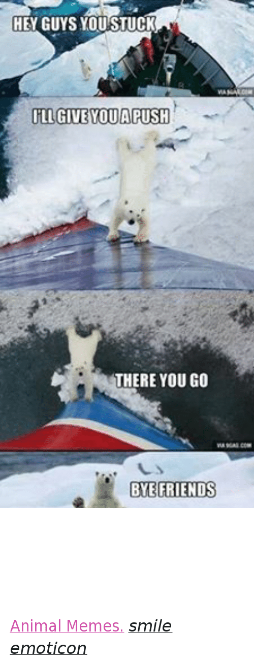 Animation Meme: HEY GUYS YOU STUCK  ILL GIVE OUA PUSH  THERE YOU GO  BYE FRIENDS Animal Memes. smile emoticon