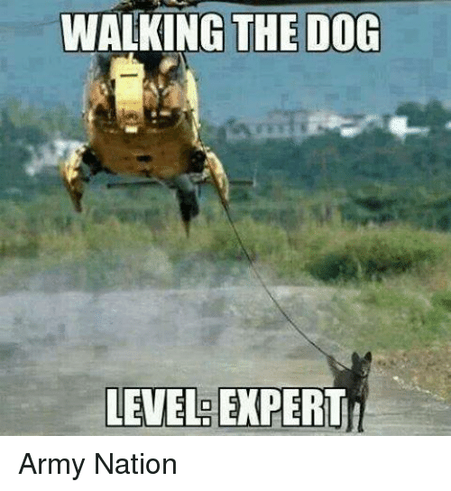 Dogs, Army, and Military: WALKING THE DOG  LEVELEXPERT Army Nation