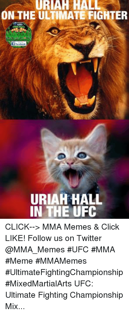 Mma Meme: URIAH HALL  N THE ULTIMATEFIGHTER  Df facebook  URIAH HALL  IN THE UFC CLICK--> MMA Memes & Click LIKE! Follow us on Twitter @MMA_Memes  ‪#‎UFC‬ ‪#‎MMA‬ ‪#‎Meme‬ ‪#‎MMAMemes‬ ‪#‎UltimateFightingChampionship‬ ‪#‎MixedMartialArts‬ UFC: Ultimate Fighting Championship Mixed martial arts