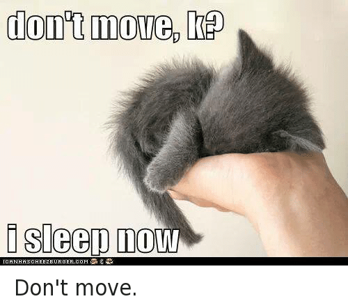 dont move