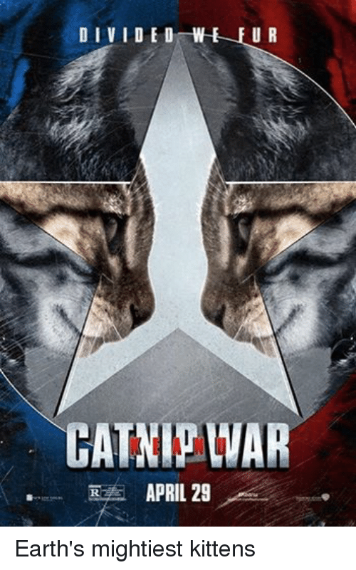 Avengers: DIVIDED  WE U R  RZA APRIL 29 Earth's mightiest kittens