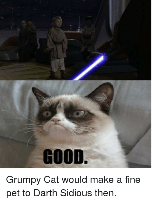 Cats, Star Wars, and Grumpy Cat: GOOD. Grumpy Cat would make a fine pet to Darth Sidious then.