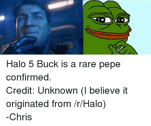 Rare Pepe: Halo 5 Buck is a rare pepe confirmed. Credit: Unknown (I believe it originated from /r/Halo) -Chris