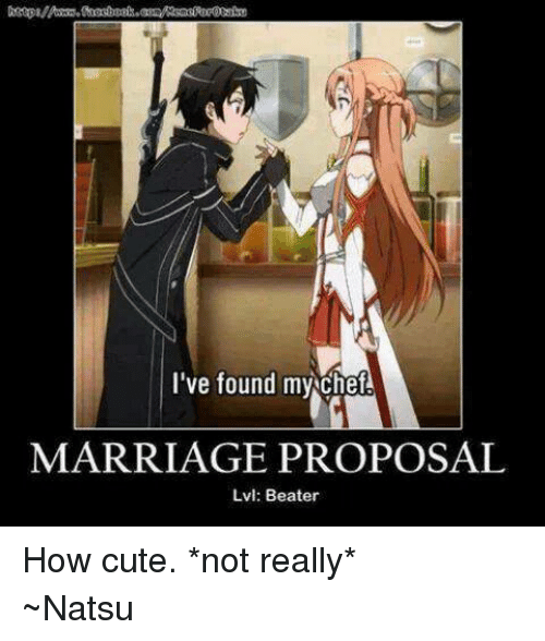 Anime, Cute, and Marriage: I've found my cheA  MARRIAGE PROPOSAL  Lvl: Beater How cute. *not really* ~Natsu