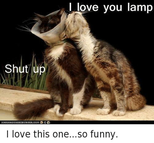 Funny, Love, and Shut Up: Shut up  ICAN  I love you lamp I love this one...so funny.