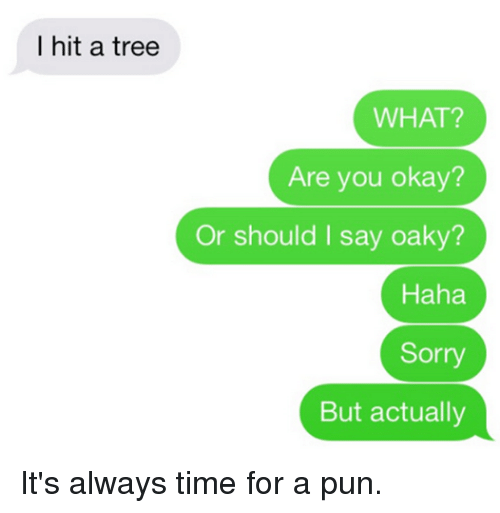 Funny, Puns, and Sorry: I hit a tree  WHAT?  Are you okay?  Or should I say oaky?  Haha  Sorry  But actually It's always time for a pun.