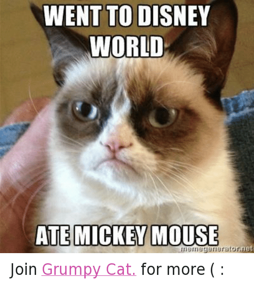 Grumpy Cat Disney World