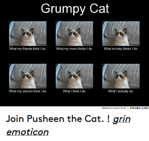 What My Mom Thinks I Do: Grumpy Cat  What my friends think l do.  What my mom thinks I do.  What society thinks I do.  What  my owners think do.  What I think I do.  What I actually do.  MEMES & FUNNY PICS  FRABZ COM Join Pusheen the Cat. ! grin emoticon