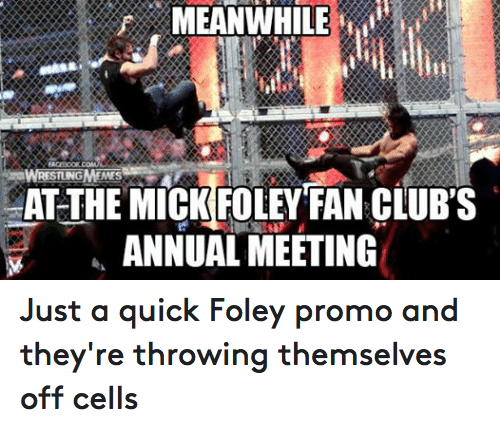 mick foley: MEANWHILE  MES  AT THE MICK FOLEY FAN CLUBS  ANNUAL MEETING Just a quick Foley promo and they're throwing themselves off cells