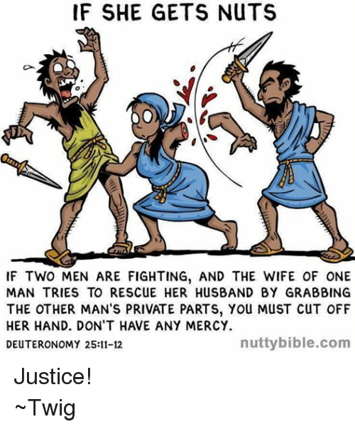 the other man: IF SHE GETS NUTS  IF TWO MEN ARE FIGHTING, AND THE WIFE OF ONE  MAN TRIES TO RESCUE HER HUSBAND BY GRABBING  THE OTHER MAN'S PRIVATE PARTS, You MuST CuT OFF  HER HAND. DON'T HAVE ANY MERCY.  nutty bible.com  DEUTERONOMY 25:11-12 Justice! ~Twig