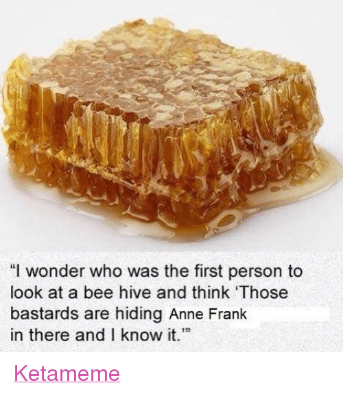 "Anne Frank, Dank Memes, and Wonder: ""I wonder who was the first person to  look at a bee hive and think 'Those  bastards are hiding Anne Frank  in there and I know it.'"" Ketameme"