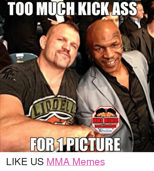 Mma Meme: TOO MUCH KICK ASS  f facebook  FOR PICTURE LIKE US MMA Memes