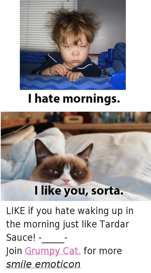 Tardar Sauce: I hate mornings.  like you, sorta. LIKE if you hate waking up in the morning just like Tardar Sauce! -_____- Join Grumpy Cat. for more smile emoticon