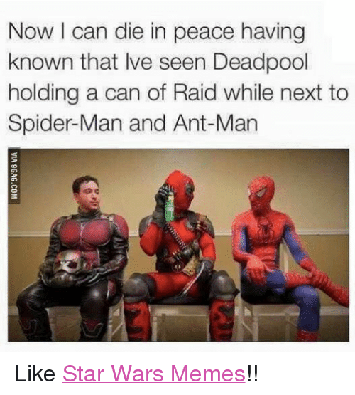 War Meme: Now can die in peace having  known that lve seen Deadpool  holding a can of Raid while next to  Spider-Man and Ant-Man Like Star Wars Memes!!