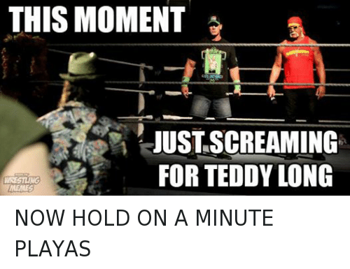 teddy long: THIS MOMENT  JUSTASCREAMING  FOR TEDDY LONG  MEMES NOW HOLD ON A MINUTE PLAYAS
