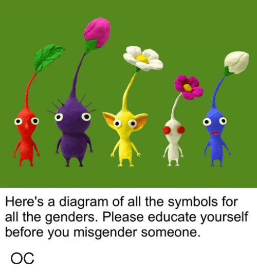 Dank Memes, Diagram, and All The: O O O O  Here's a diagram of all the symbols for  all the genders. Please educate yourself  before you misgender someone OC