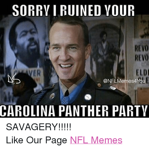 Carolina Panthers, Meme, and Memes: SORRY I RUINED YOUR  REVO  REVO  ELDI  Youl  CAROLINA PANTHER PARTY SAVAGERY!!!!! Like Our Page NFL Memes