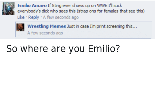 meme: Emilio Amaro If Sting ever shows up on WWE I'llsuck  everybody's dick who sees this (strap ons for females that see this)  Like Reply A few seconds ago  Wrestling Memes Just in case Im print screening this...  A few seconds ago So where are you Emilio?